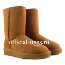 UGG MEN'S SHORT CHESTNUT II